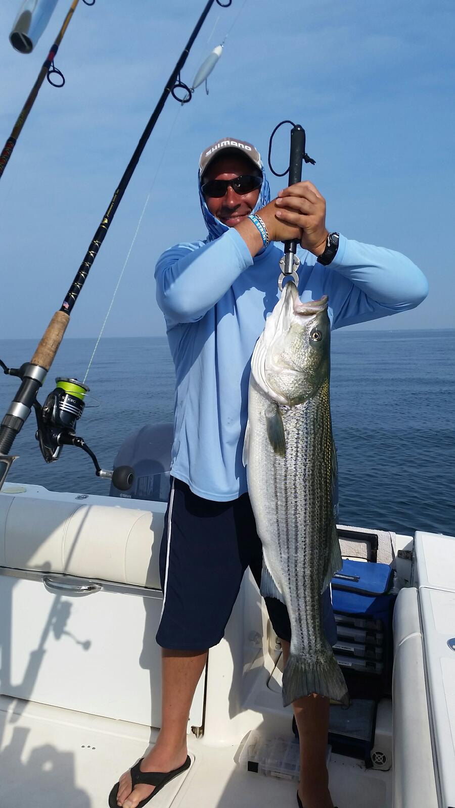 40 lb Striped Bass